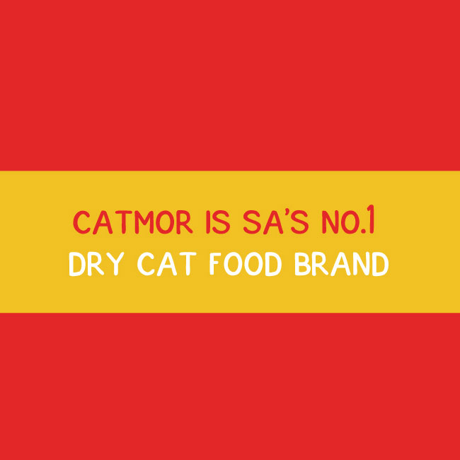 Catmor is South Africa's number 1 dry cat food