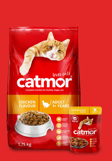 Catmor product shot