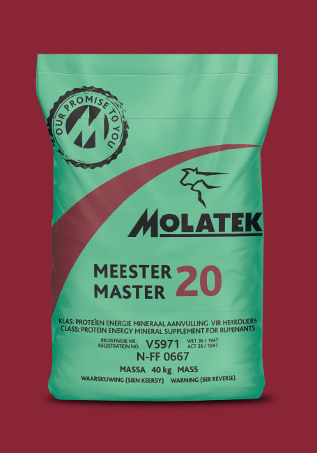 Molatek Master / Meester 20