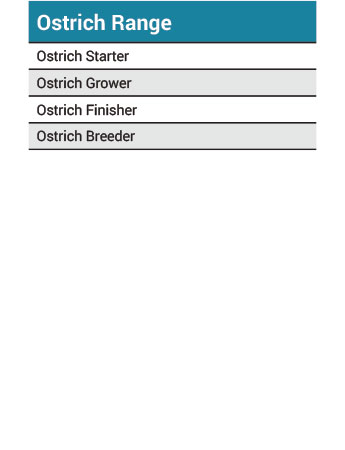 Driehoek Ostrich Range Information