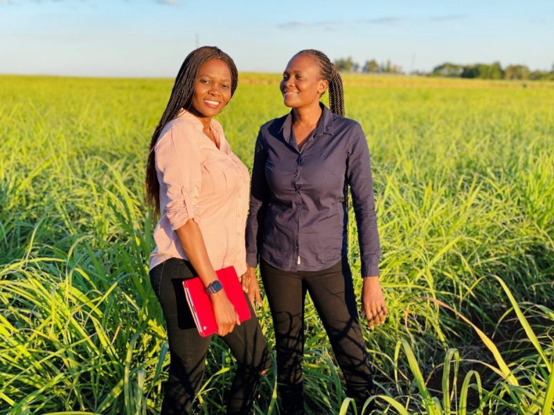 Enterprising twin sisters cut into a male-dominated field