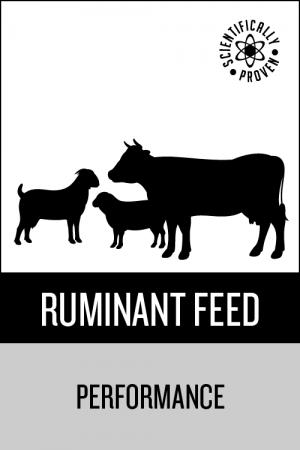 Epol Ruminant Feed Performance